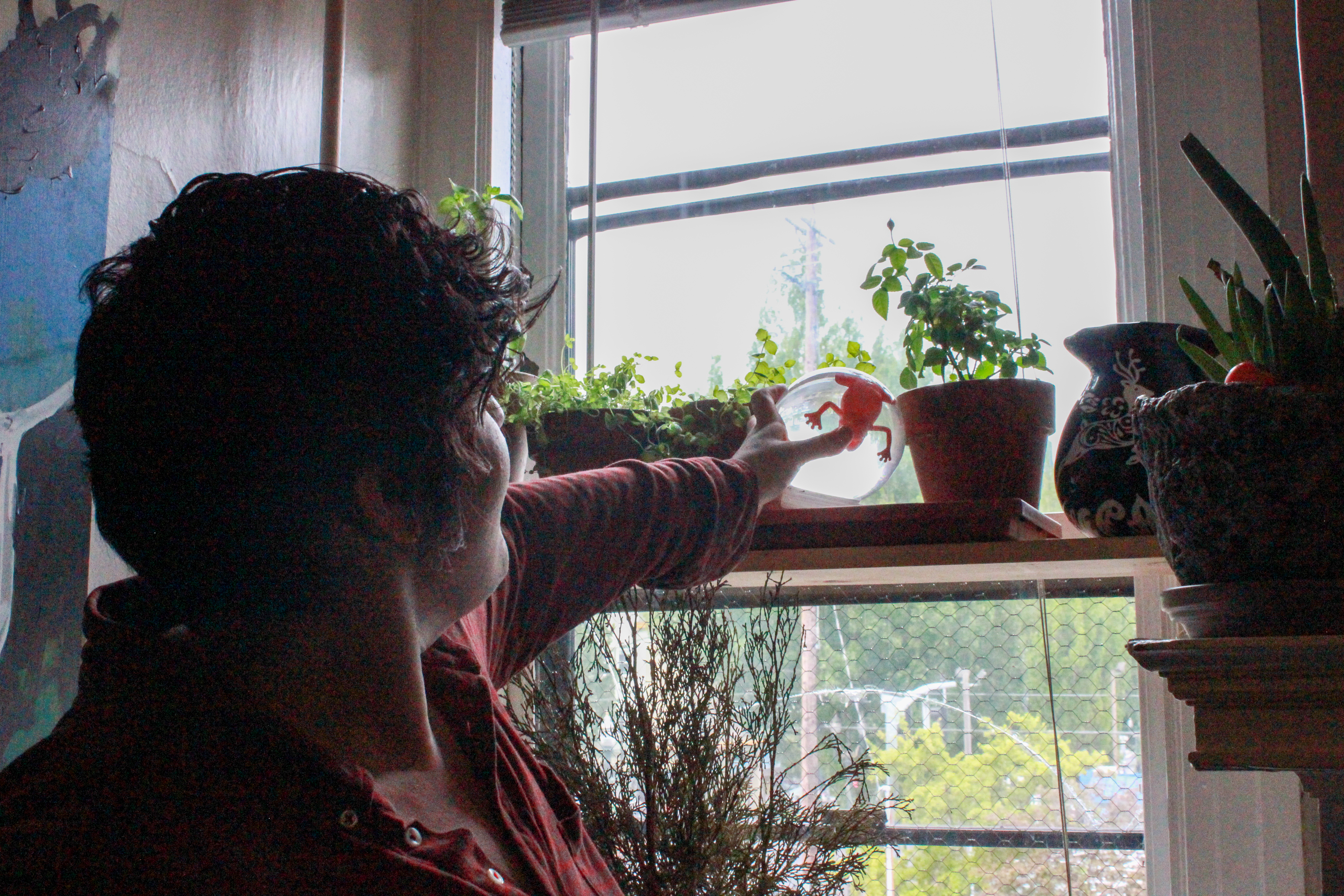 Photo showing Rae Bloodgood looking at snowglobe on shelf in apartment