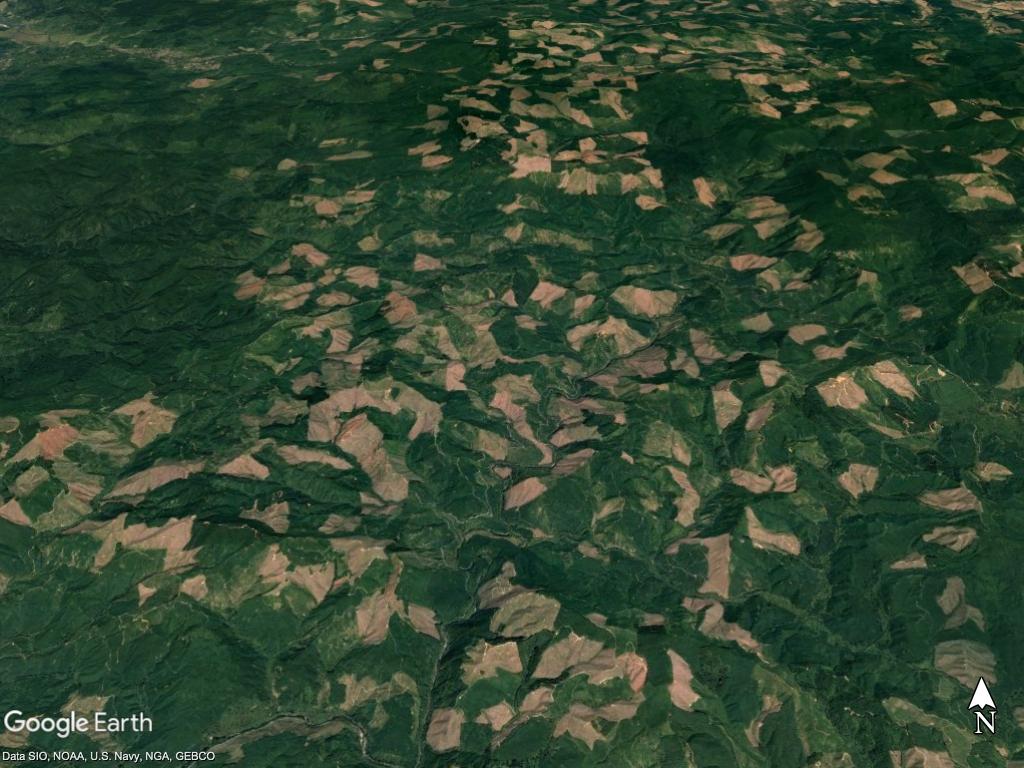 Siletz Gorge clear-cuts