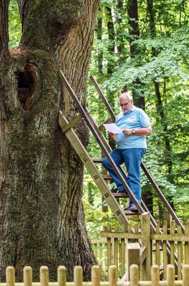 Karl Heinz Martens at the Groom Oak