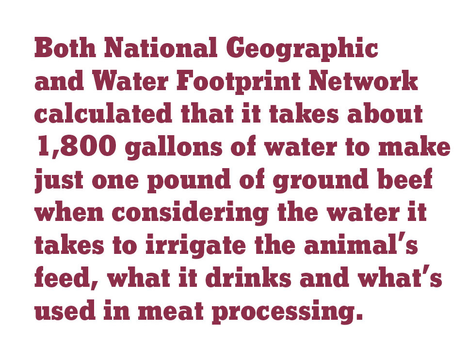 Both National Geographic and Water Footprint Network calculated that it takes about 1,800 gallons of water to make just one pound of ground beef when considering the water it takes to irrigate the animal's feed, what it drinks and what's used in meat proc