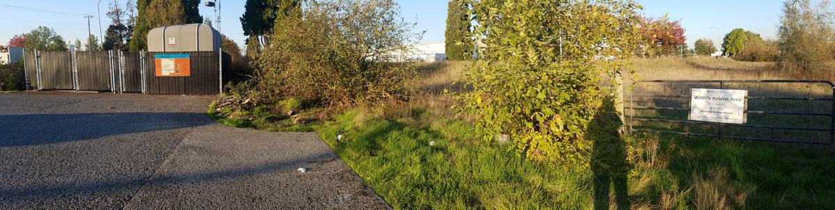 Rivergate Pump Station and wetlands