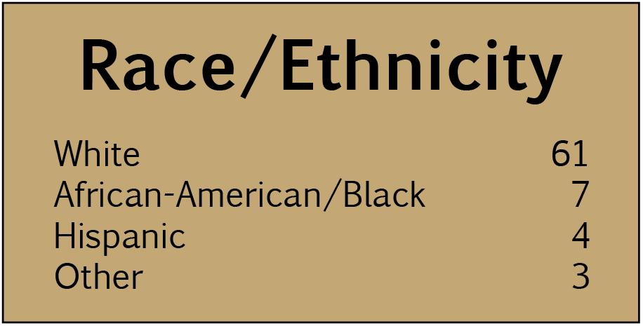 2017 Domicile Unknown: Race/Ethnicity chart
