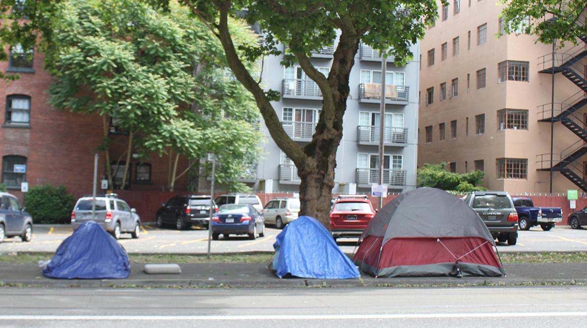 Michelle's campsite