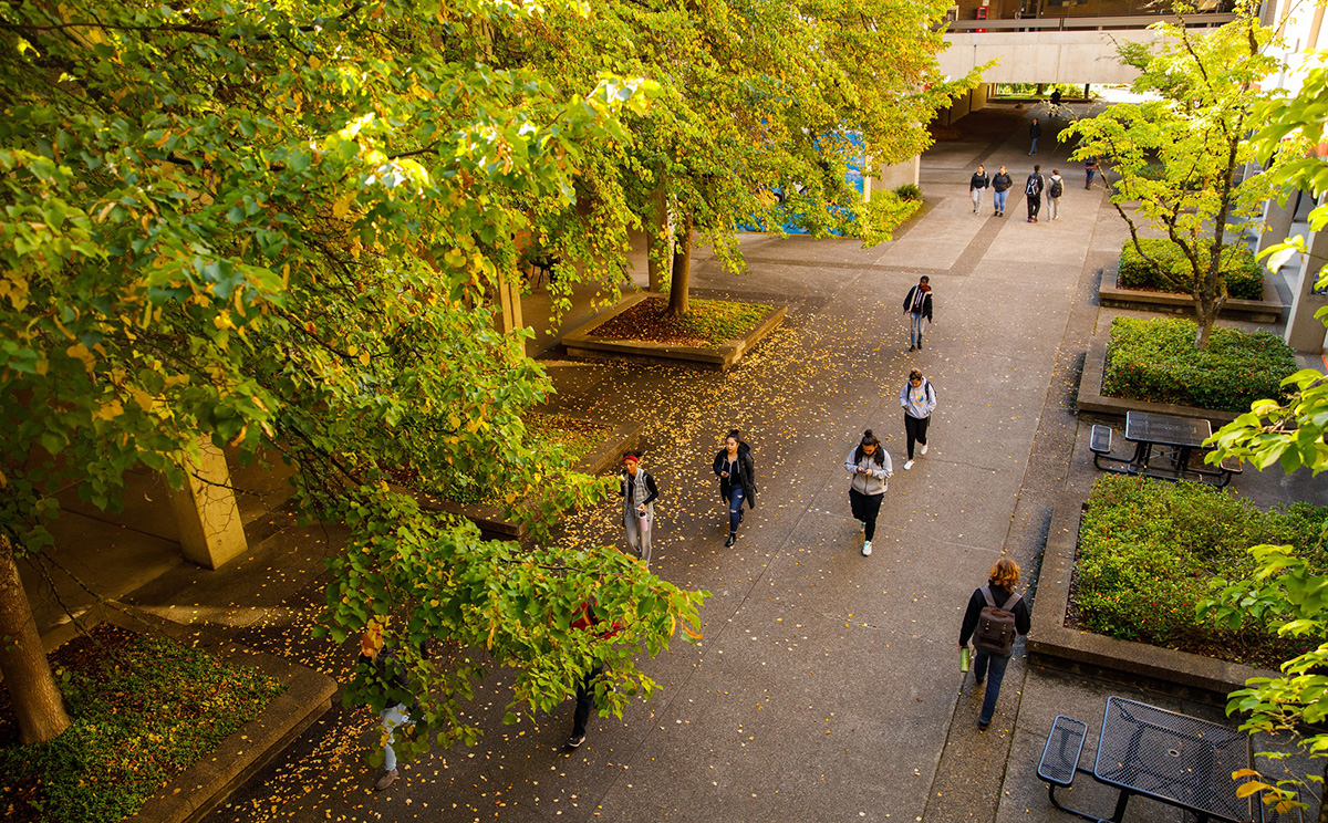 A wide shot of the campus with students walking