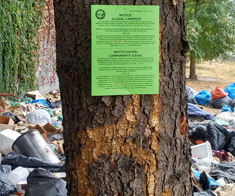 Photo of a tree trunk with a paper notice declaring it an illegal campsite.