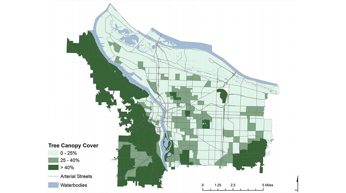 Maps showing Portland's tree canopy coverage
