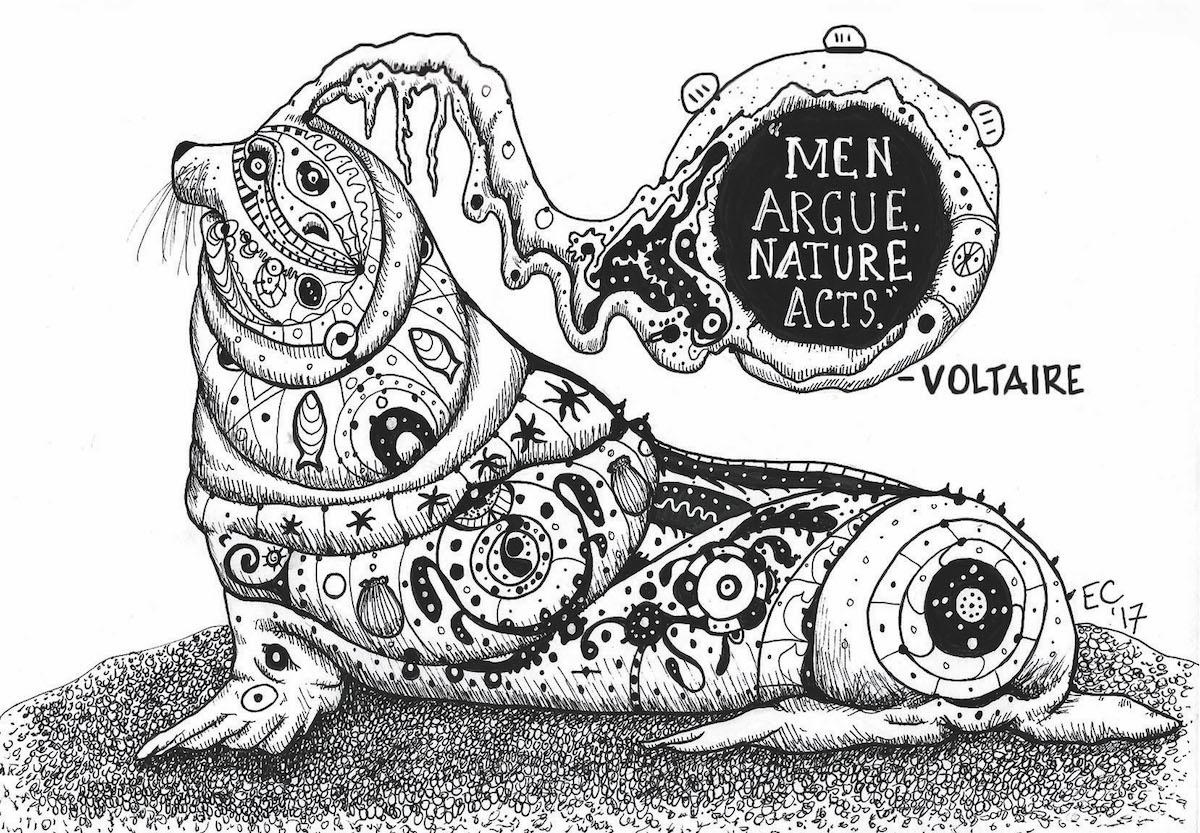 Sheeptoast: Men argue. Nature acts.