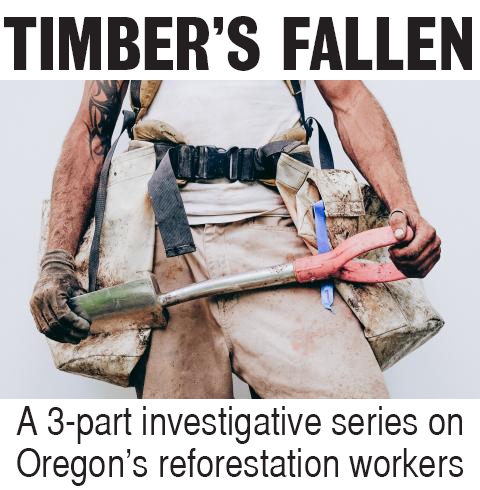 Timber's Fallen: A 3-part series