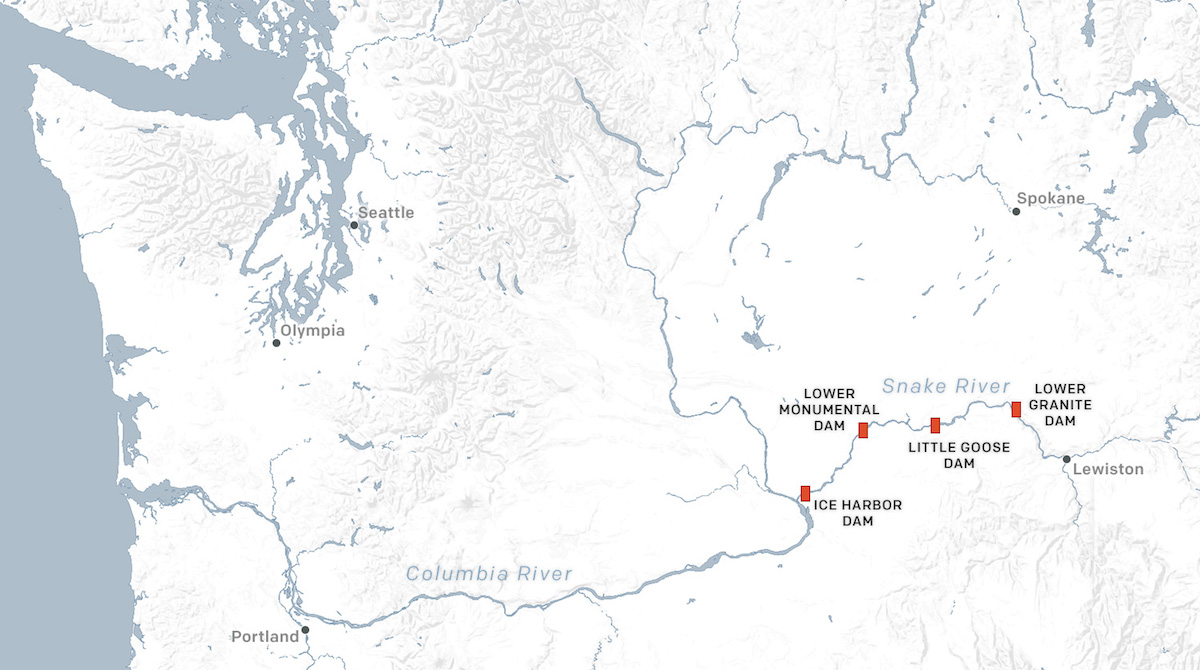 A maps of the four dams on the Snake River that Nez Perce activists want removed