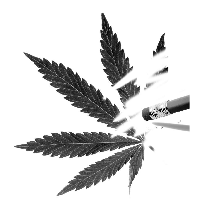 Write my marijuana research paper