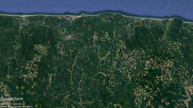 Clear-cuts in Lincoln County shown in Google Earth