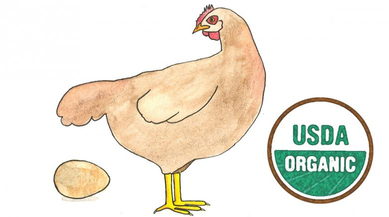Illustration of a hen with an egg, plus the USDA Organic label