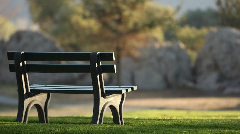A photo of a park bench on grass