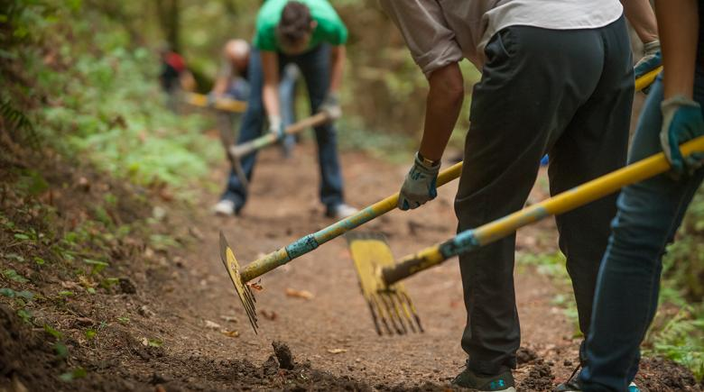 People use garden tools in the forest