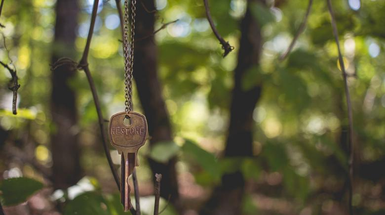 A key hangs from a tree alone in the woods