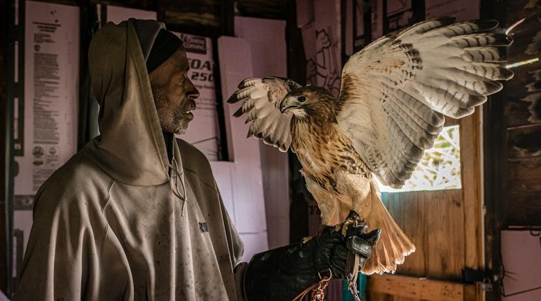 Rodney Stotts holds a hawk