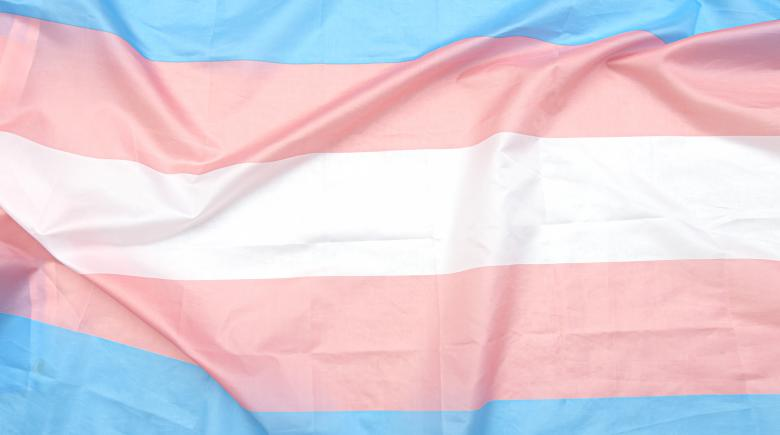 Trans pride flag (blue, pink and white stripes)