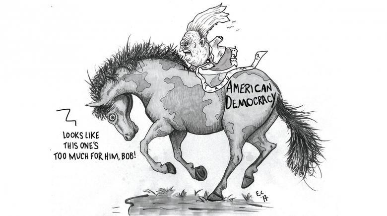 Sheeptoast: Democracy Rodeo