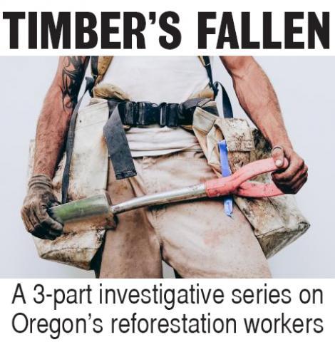 Timber's Fallen: A 3-part series